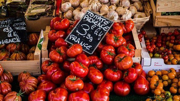 Die französischen Behörden haben vor einem möglichen Fall des ToBRFV-Virus gewarnt, der Tomaten, Paprika und Chili befällt.