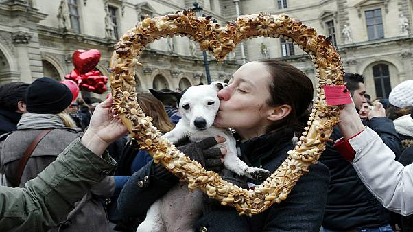 الكلاب قادرة على الحب
