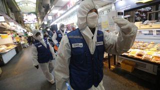 COVID-19 outbreak: China says bats, pangolin likely 'virus hosts'