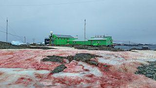 Ukraine's scientific station in Antarctica seen in February 2020.