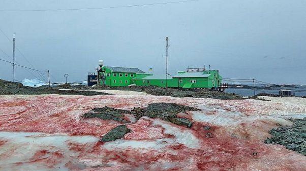 Ukrainische Forschungsstation in der Antarktis