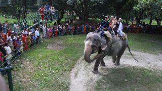 أطفال يركبون فيلًا في حديقة الحيوانات بدكا في بنغلادش  12/12/2010