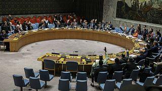 مجلس الأمن الدولي     25/02/2020