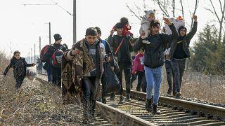 Edirne'den Yunanistan'a geçmeye çalışan göçmenler