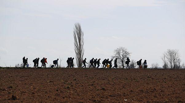 Osztrák rendőrök jöhetnek a magyar-szerb határhoz
