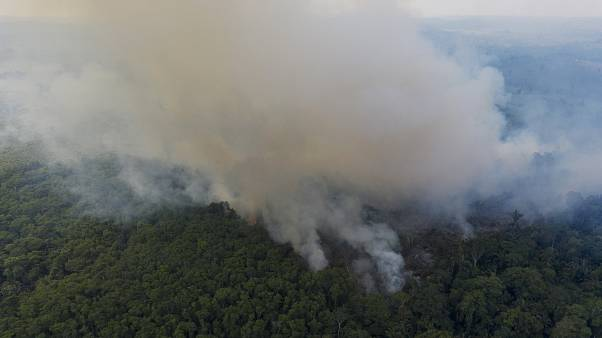 Smoke rises from a fire in the Amazon rainforest
