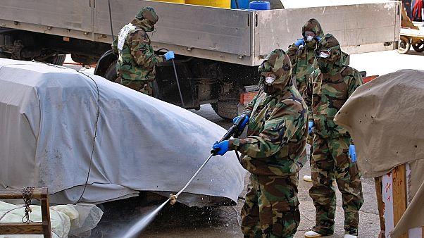 Iraq Virus Outbreak