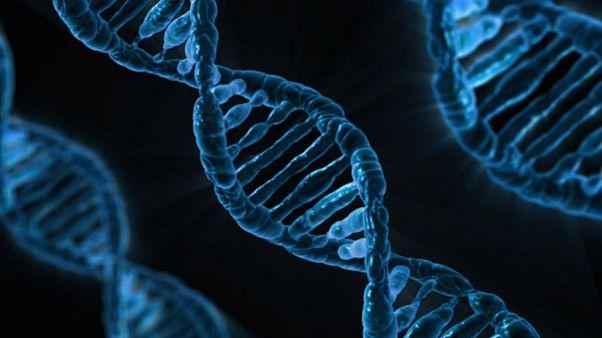 روش انقلابی دانشمندان برای درمان نابینایی مادرزادی با دستکاری در ژنها