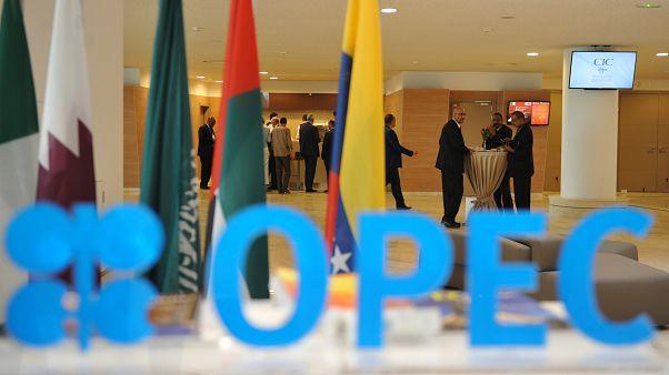 إجتماع دول مجموعة أوبك