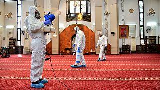 Camide koronavirüse karşı dezenfeksiyon çalışması