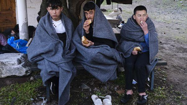 چند پناهجو در مرز تریکه و یونان