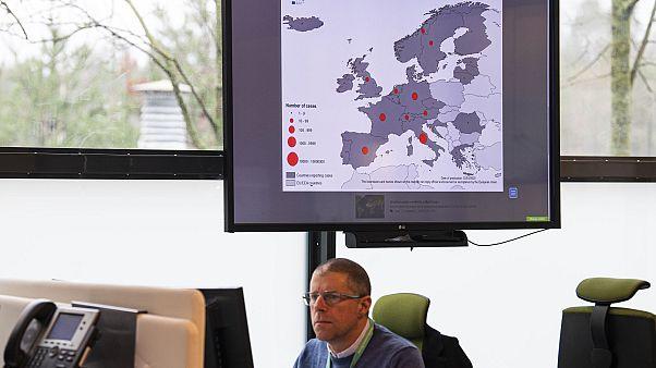 Coronavirus: la mappa del contagio nel mondo e le cifre in tempo reale