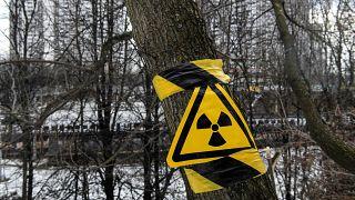 Знак радиации в лесу на месте захоронения отходов Московского завода полиметаллов