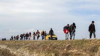 Des migrants marchent près de la frontière entre Grèce et Turquie, février 2020