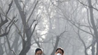 Sokaklardaki havayı kirleten araçlar Covid-19'un ölüm oranını artırıyor