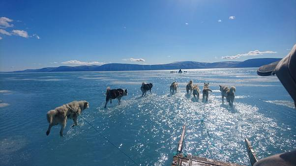 Szokatlan meleg Grönlandon