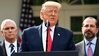 Le président des Etats-Unis à la Maison Blanche, le 13 mars 2020.