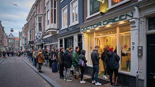 ویروسکرونا مصرفکنندگان ماریجوانا را در هلند به صف کرد