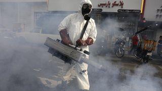 عامل من فرق الطوارئ يقوم برش مبيدات في شوارع العاصمة الإيرانية طهران