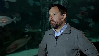 A tengerbiológusok már látják a jeleket, hogy az ember a saját létét veszélyezteti
