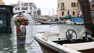 Sogar in Venedig: Ausbleiben der Touristen sorgt für saubereres Wasser