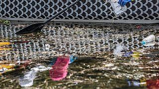 Çevre gönüllüleri, Mısır'a hayat veren Nil Nehri'ni temizlemeye çalışıyor