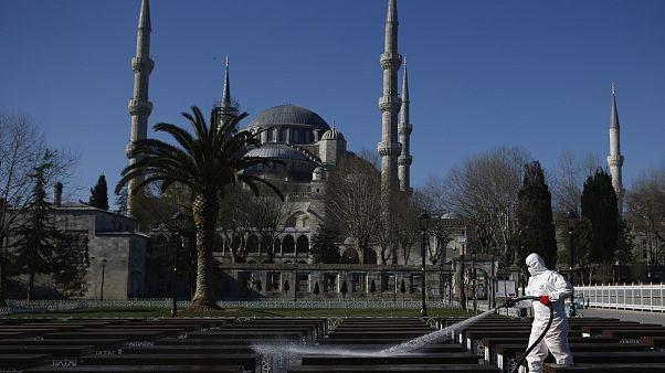 APTOPIX Virus Outbreak Turkey