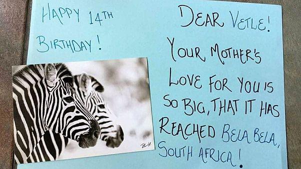 Dél-afrikai szülinapi üzenet Norvégiába