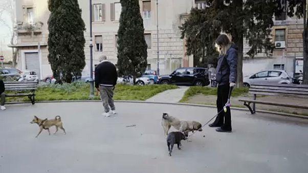 Η βόλτα με τον σκύλο σε καιρούς καραντίνας