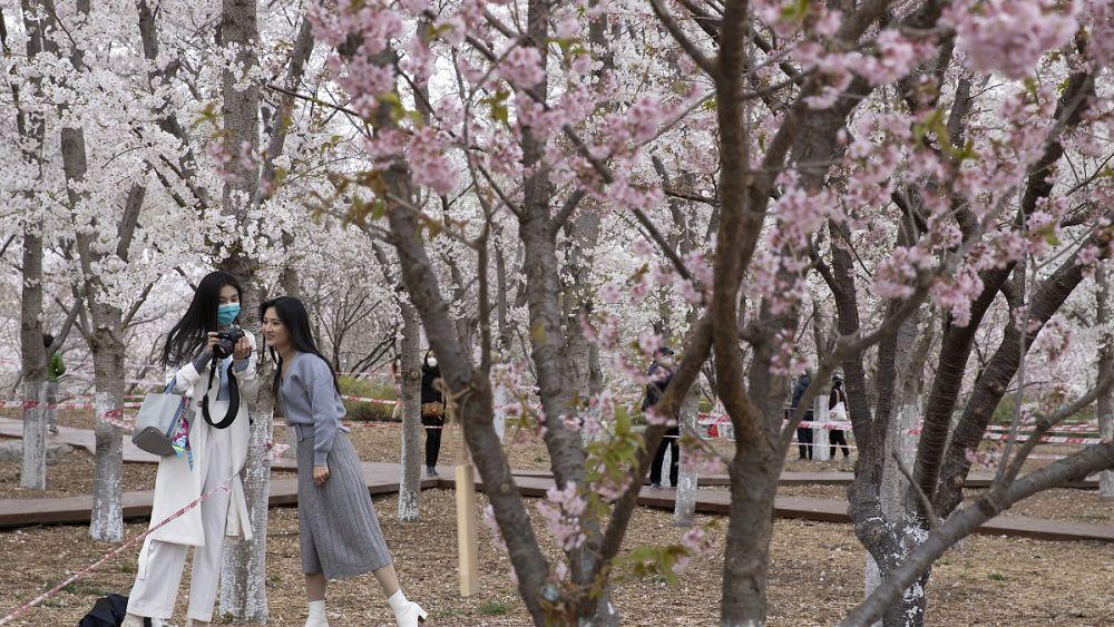 Después de dos meses de encierro, los chinos disfrutan la llegada de la primavera 28