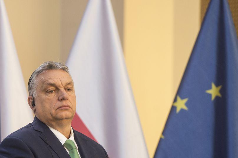 Photo by Michal Cizek / AFP