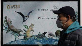 Pekin'de vahşi hayvanları korumayı teşvik eden bir propaganda posteri