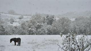 Los españoles verán la nieve desde sus ventanas
