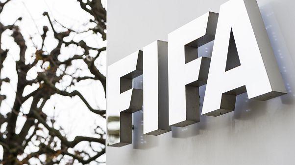 """فيفا يعتزم تقديم """"مساعدات"""" لكرة القدم العالمية"""