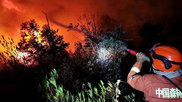 Çin'de orman yangını