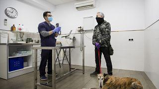 عيادة طب الحيوانات