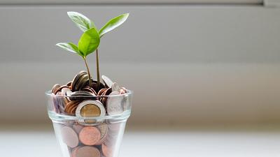 Plant pot of money to represent green banking