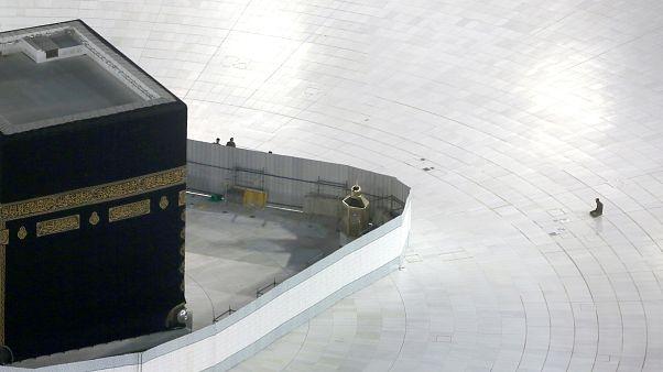 السعودية نيوز |      شاهد: كورونا يباعد بين الصفوف بدل رصها بصلاة التراويح في المسجد الحرام