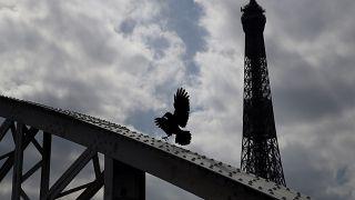 برج إيفيل وسط العاصمة الفرنسية باريس