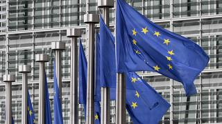 European Elections Fighting Fake News