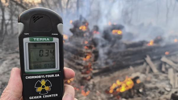 Forest fires in Chernobyl exclusion zone bring hike in radiation
