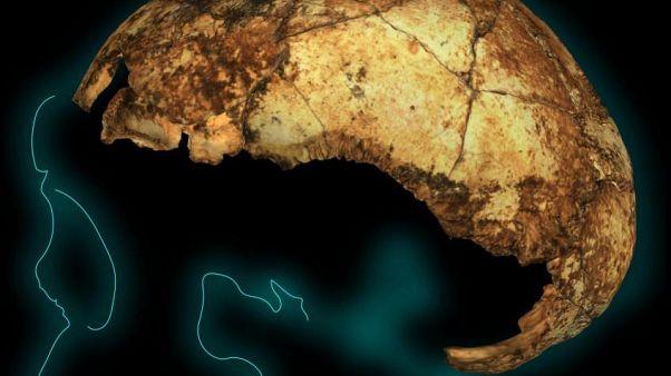 Ανακαλύφθηκε το αρχαιότερο στον κόσμο κρανίο Homo erectus