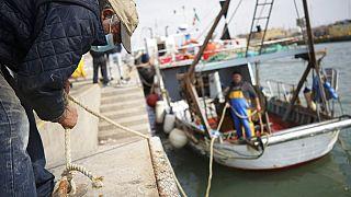 Стресс-тест для рыболовства