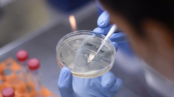 A researcher works on the development of a vaccine in Brazil