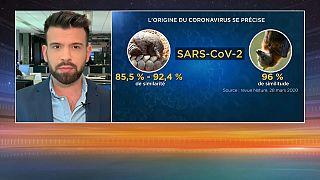 Coronavirus et théories du complot : 26% des Français pensent que le virus a été créé en laboratoire