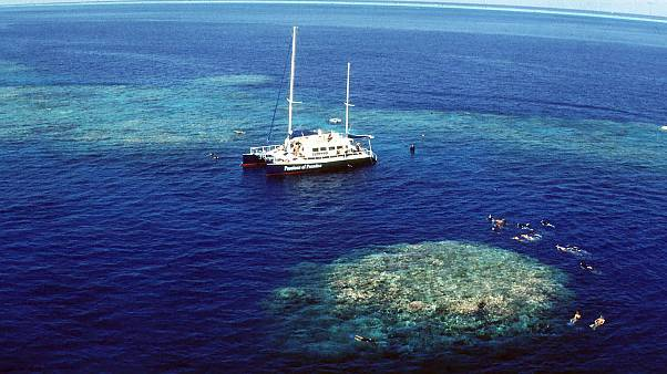 Upolu Cay on the Great Barrier Reef near Cairns off the Australian north east coast.
