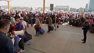 Miles de temporeros rumanos rumbo a Alemania pese al COVID-19