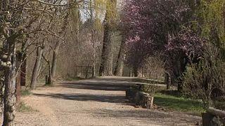 Üres sétaút Nagykovácsiban