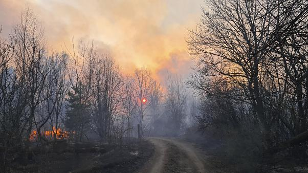A forest fire burning near the village of Volodymyrivka, in the exclusion zone around the Chernobyl nuclear power plant, Ukraine, Sunday April 5, 2020.