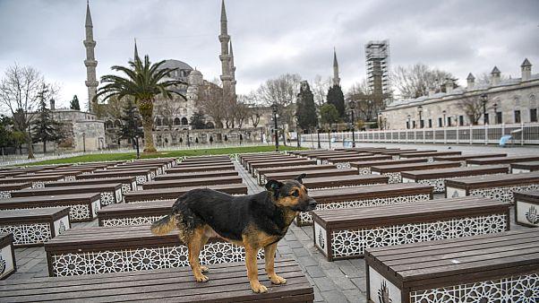 Turquía declara un toque de queda de 48 horas en más de 30 provincias
